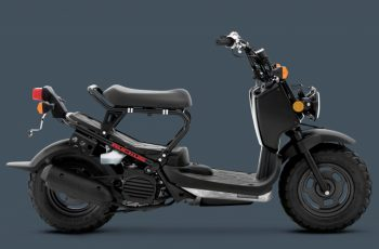 2017 Honda Ruckus Owners Manual Pdf